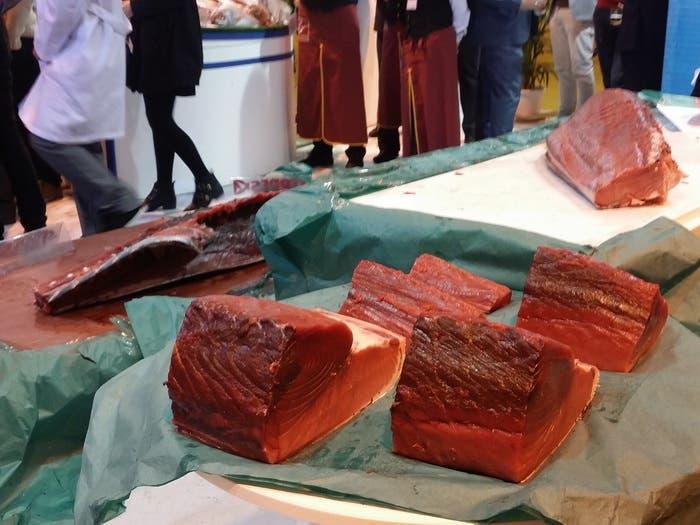 Piezas de atún para preparar sushi