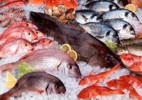 Varios pescados expuestos