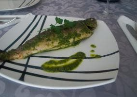 Precentación de trucha con salsa verde