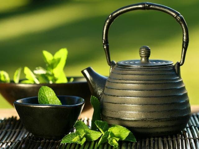 Bajar de peso a tu alcance con la ayuda del té