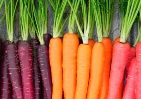Varios tipos de Zanahorias