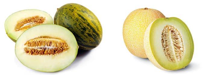 Melones variedad piel de sapo y galia