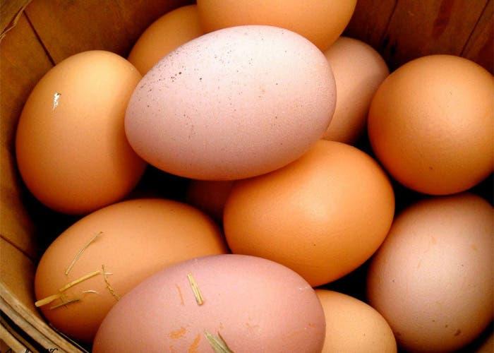 Cesta con huevos de gallina