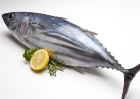 Cuál es el pescado azul