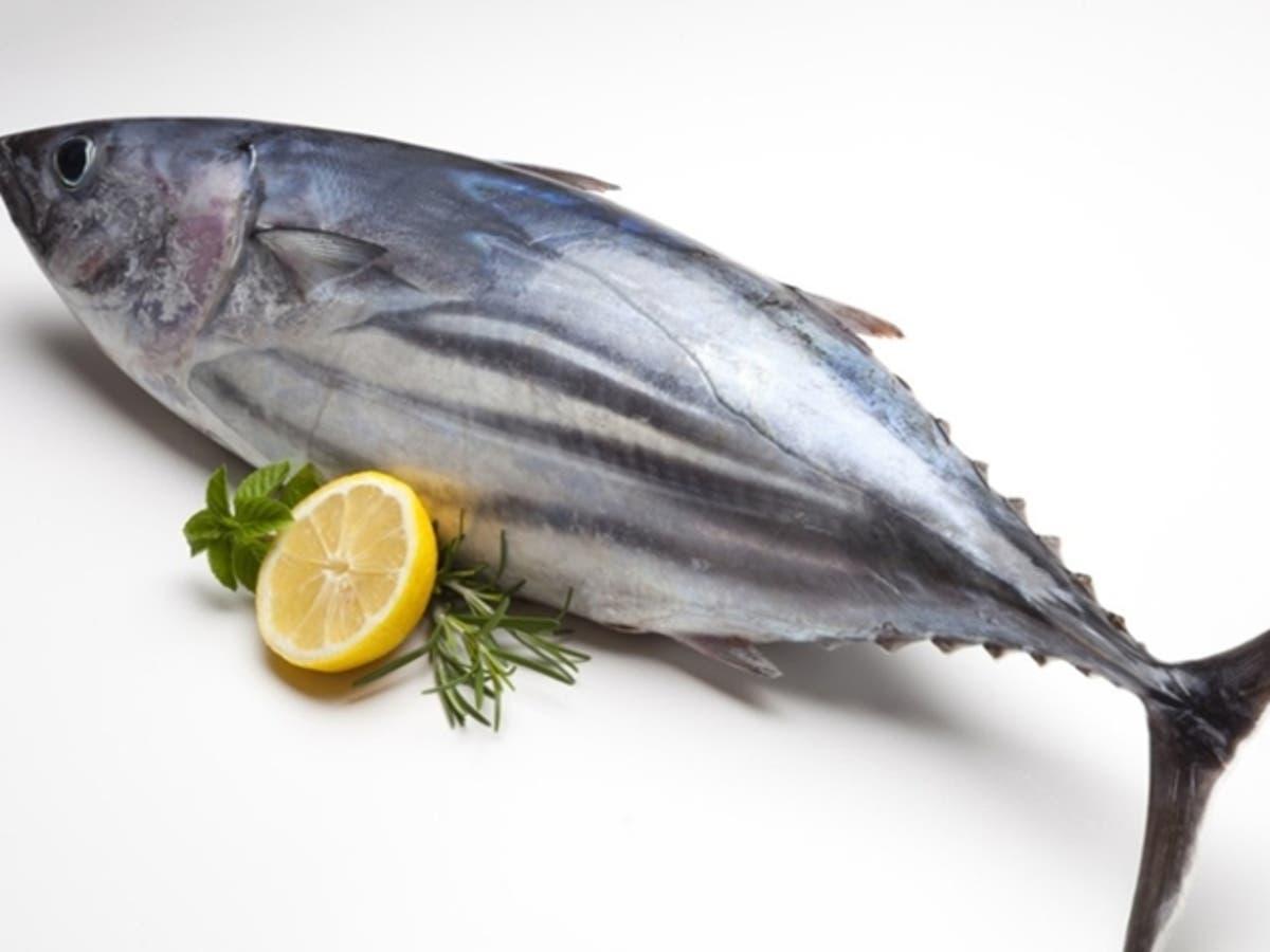 Descubre el pescado azul