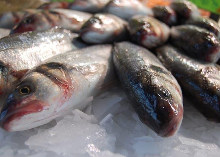 ¿Cuál es el pescado blanco?