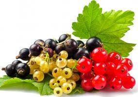 Beneficios y propiedades de la grosella