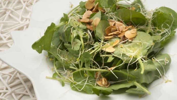 Berros, frutos secos y alfalfa