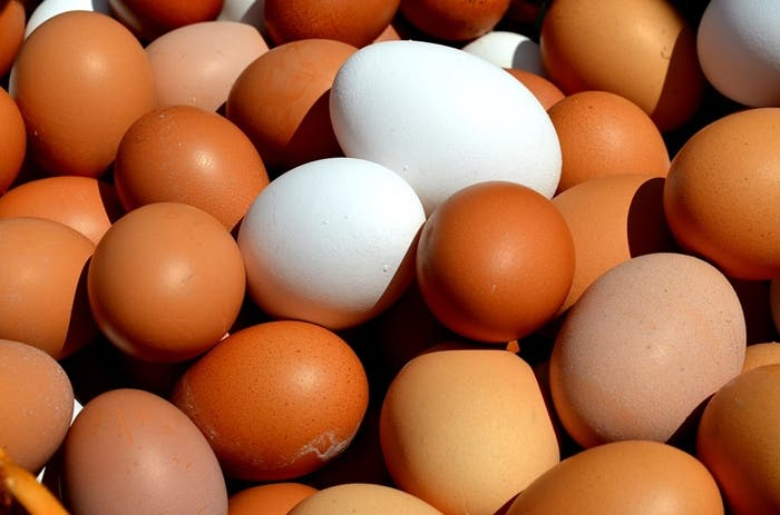 Huevos marrones y blancos