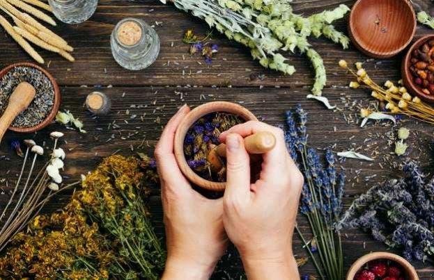 Especias medicinales para distintas dolencias y enfermedades