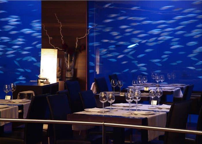 Oceanografico de Valencia en Top Chef 3